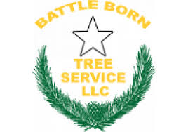 Battle Born Tree Service